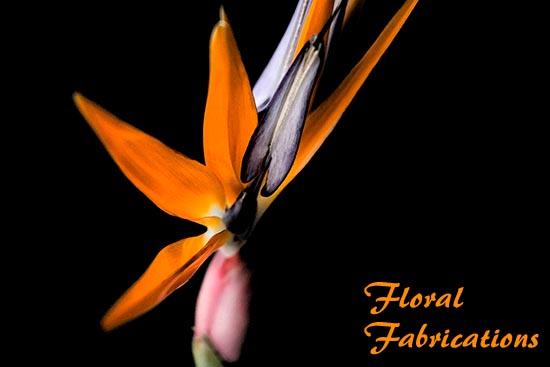 FloralFab