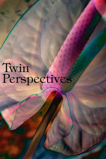 TwinPerspectives